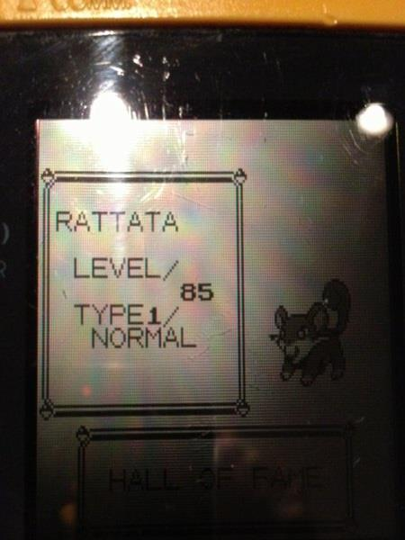 pokemon-challenges 436806-youngster-joey-challenge-rattata-soloYoungster Joey Challenge
