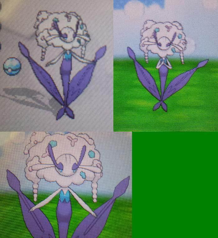 [Want] SHINY 5/6IV Flabebe/Floette/Florges WHITE FLOWER ...