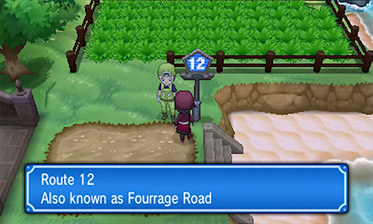 pokemon x and y how to get past route 13